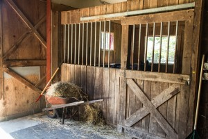 equestrian stalls in Madison CT