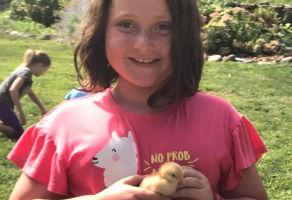 No School Farm Camp Days